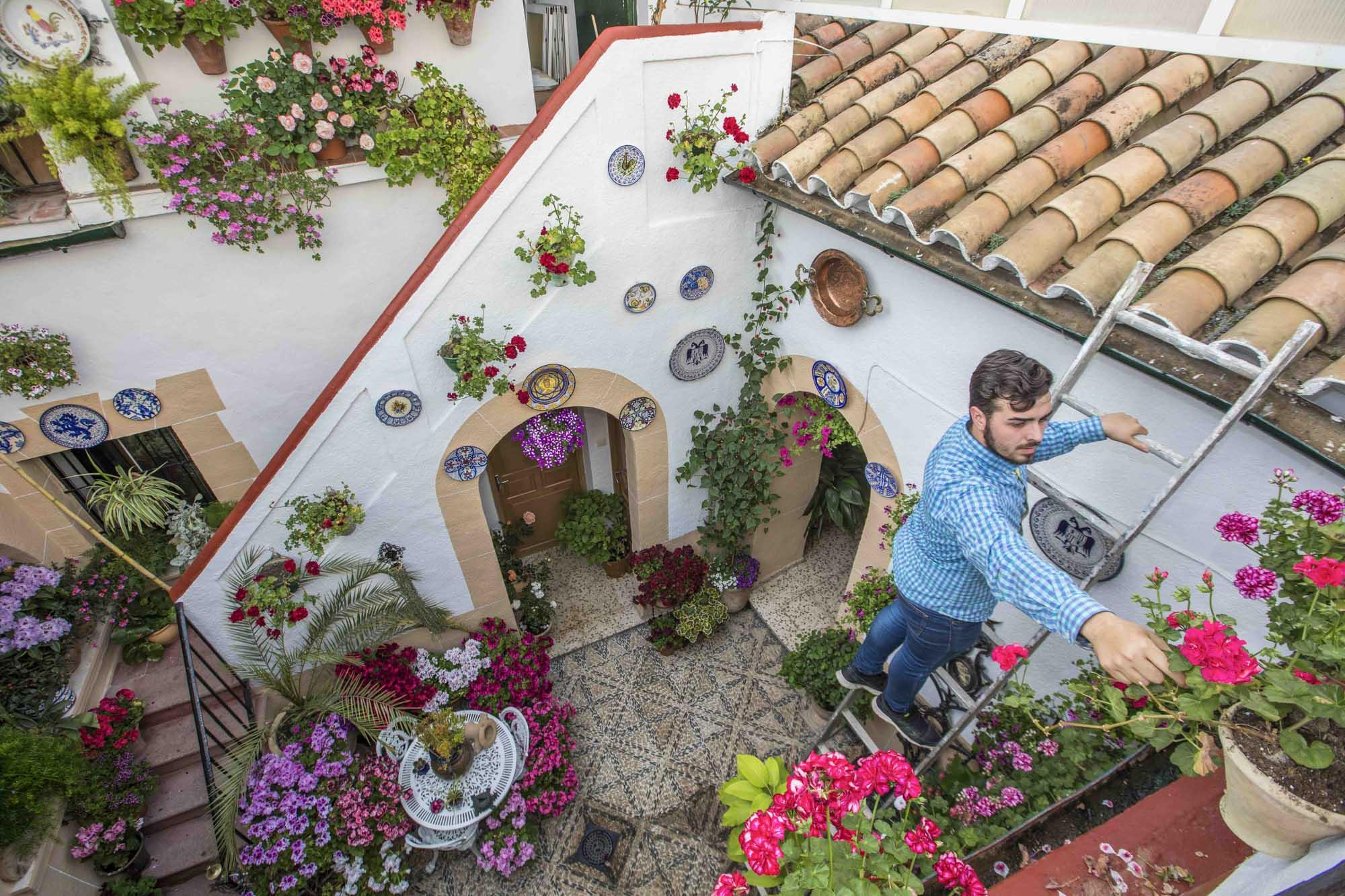 Spanien, Andalusien, Cordoba, Calle Zarco 13. Santiago Hernández (23 Jahre) ist der jüngste Patio-Wettbewerber in der Stadt. Das Haus gehörte seiner Oma Julia, der er bis zu ihrem Tod 2002 immer geholfen hat. Seine Mutter hatte kein Interesse an dem Patio und den Pflanzen. Seit zwei Jahren wohnt Santiago in dem Haus und hat den Patio und seine Pflanzen wieder mit Leben erweckt. Als Hommage an seine Oma, nimmt er das erste Mal am Wettbewerb teil.