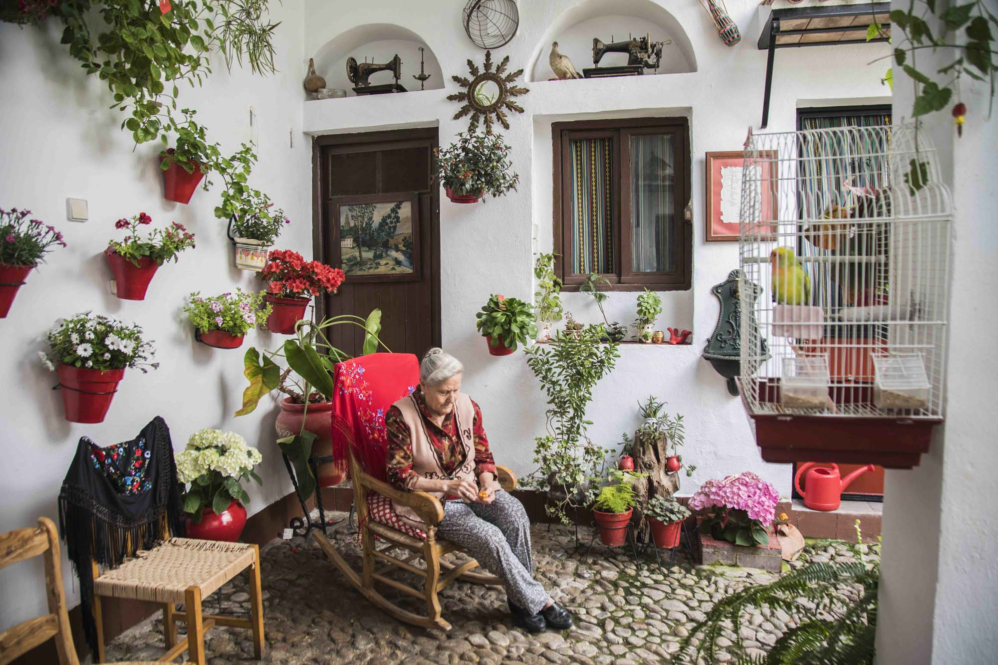 Spanien, Andalusien, Cordoba, Patio, Calle MAriano Amaya 4, Marina Muñoz (81 Jahre) pflegt ihren Patio selbst. Nur eine ihrer vier Töchter hilft ihr dabei, die anderen interessieren sich nicht für Blumen.