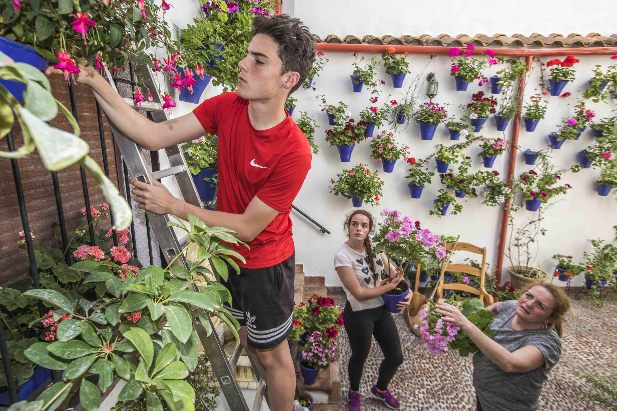 Spanien, Andalusien, Cordoba, Patio Alvar Rodriguez 11. Die Zwillinge Juan und Falima (16 Jahre) helfen ihrer Mutter MAria Prieta beim herrichten des Patios.