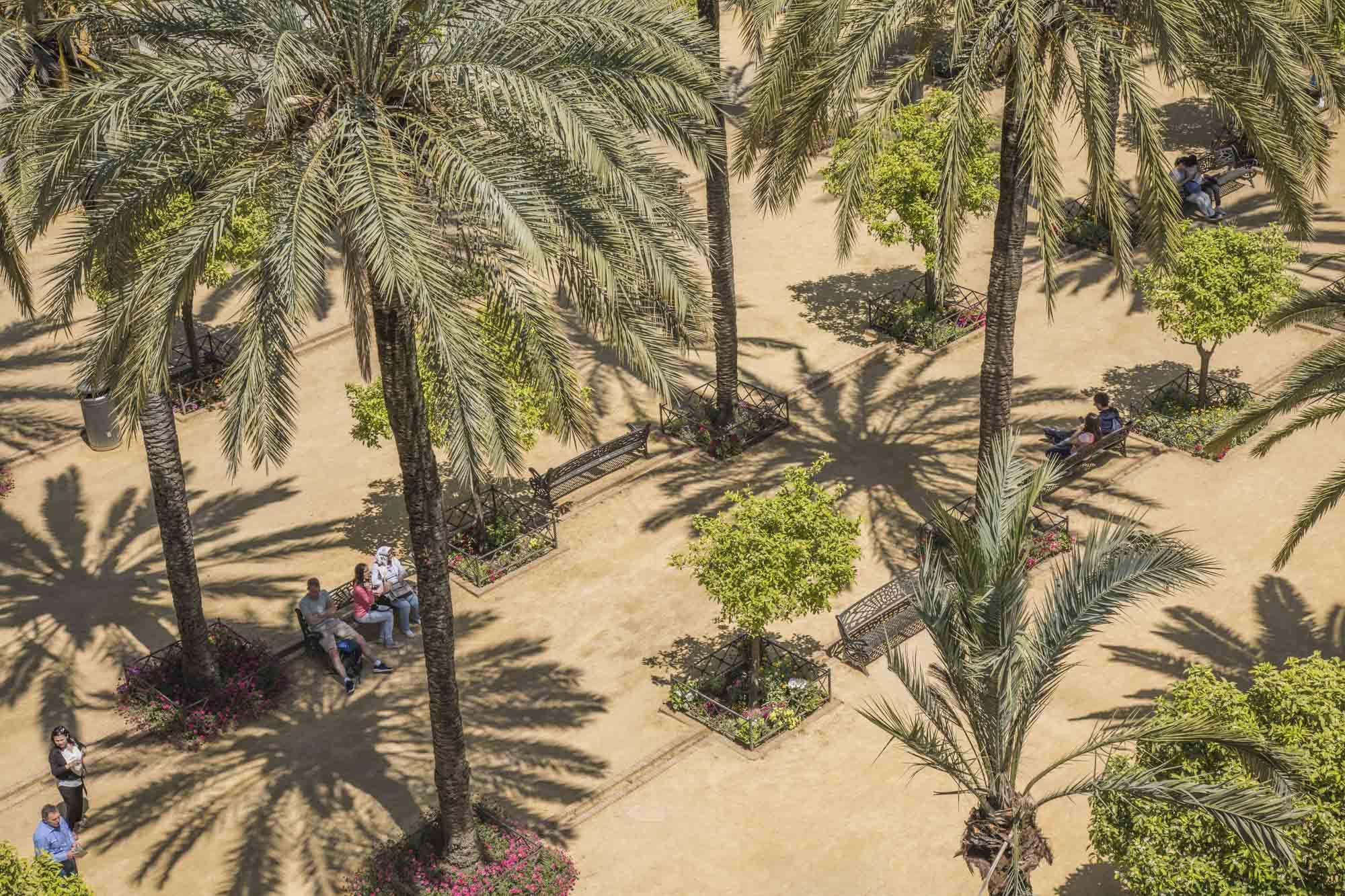 Spanien, Andalusien, Cordoba, Palmen auf dem Vorplatz des Alcázar de los Reyes Cristianos, ehemalige Mauerenfestung.