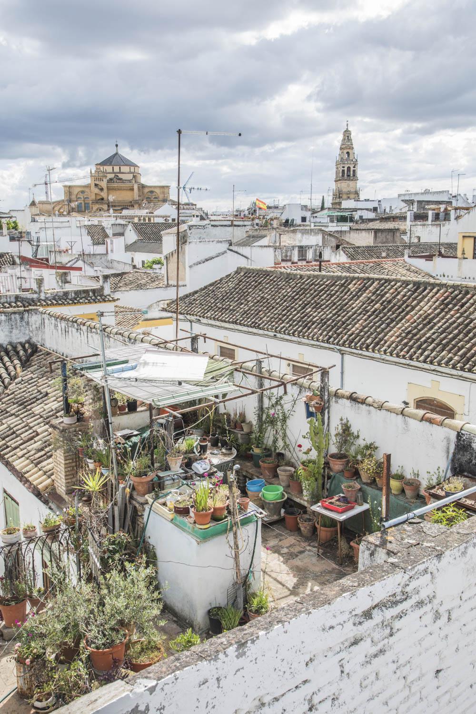 Spanien, Andalusien, Cordoba, Blick über die dächer der Altstadt Cordoba, Moschee-Kathedrale im Hintergrund
