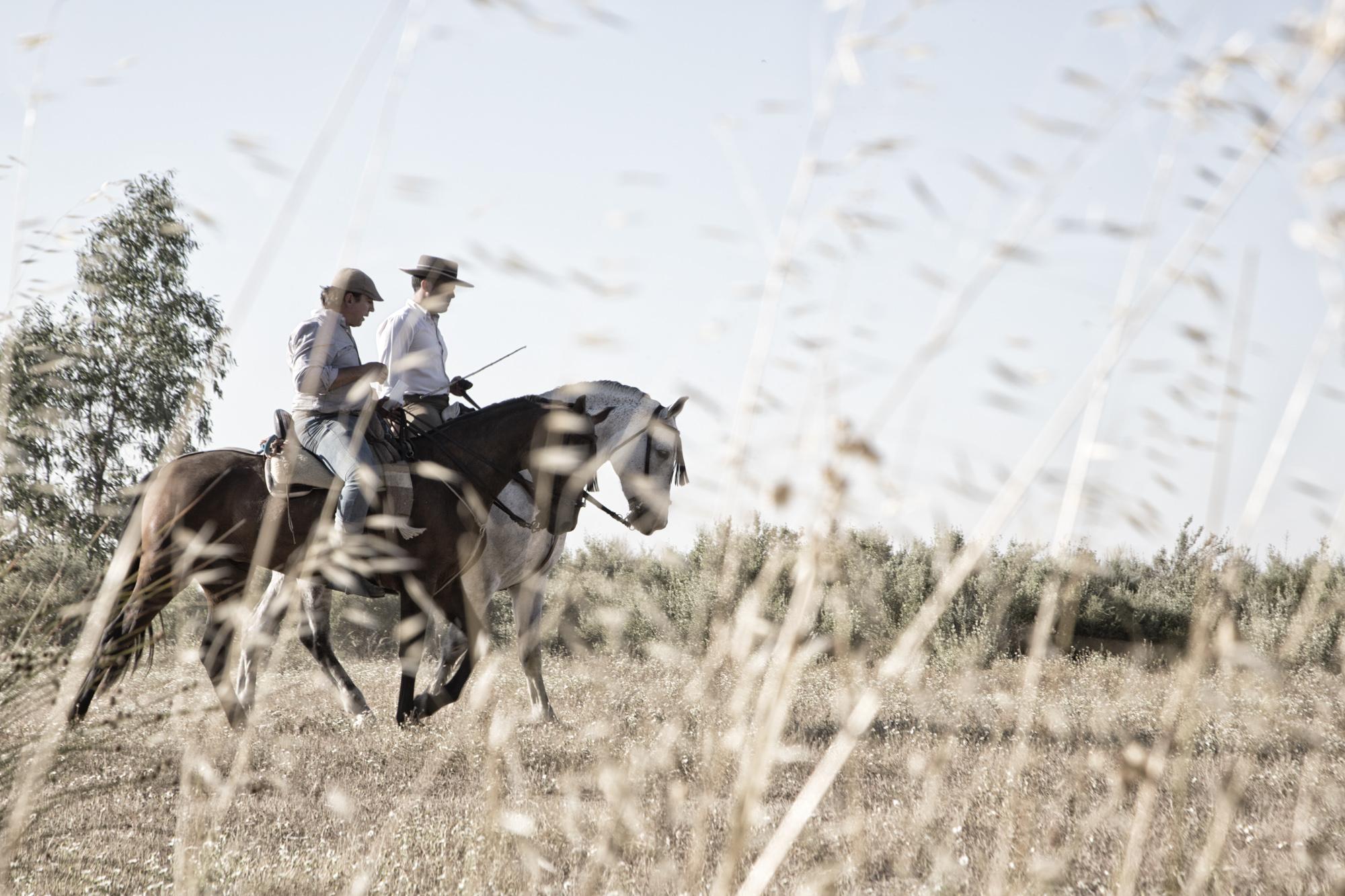 Spanish Cowboys