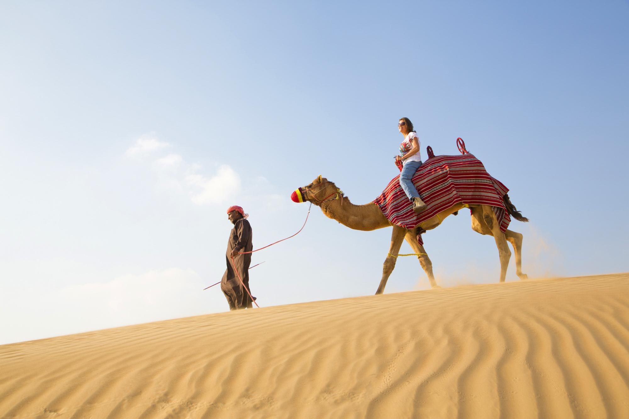 VAE, Vereinigte arabische Emirate, Dubai, Wüste, Kamel Safari, Sand, Kamele, Abenteuer, Reise  Engl.: UAE, United Arab Emirates, Dubai, Desert, Camel Safari, Sand, Camels, Adventure, Travel